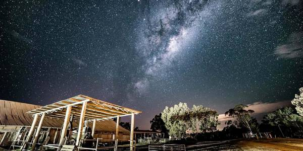 Tourism Darling Downs, The Woolshed at Jondaryan, Experience, Weddings, Conferences