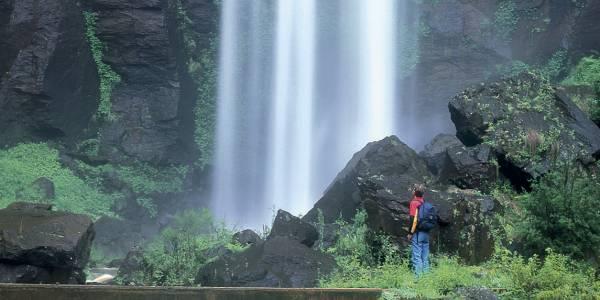 Tourism Darling Downs, Main Range National Park – Goomburra, Outdoors