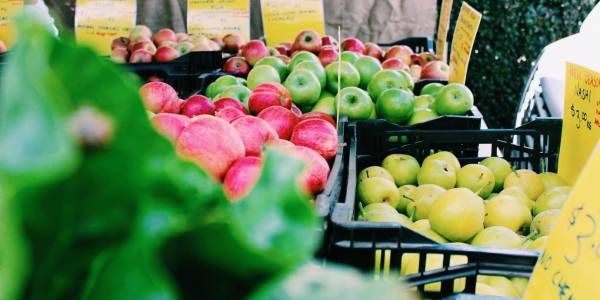 Tourism Darling Downs, My Local Feast Farmers' Markets, Markets