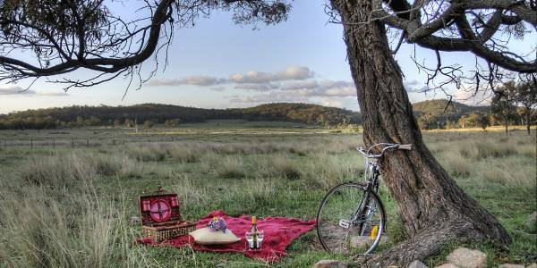 Tourism Darling Downs, Alure Stanthorpe, Camp Sites