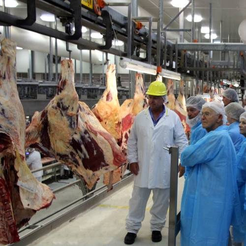 Tourism Darling Downs, Oakey Beef, Producers