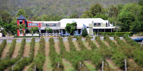 Tourism Darling Downs, Dusty Hill Wines, Motels/Hotels, Cellar Doors, Experience, Weddings, Conferences