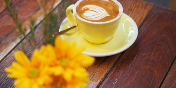 Tourism Darling Downs, Little Seed, Cafes