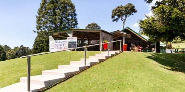Tourism Darling Downs, Bunya Mountains Markets, Markets