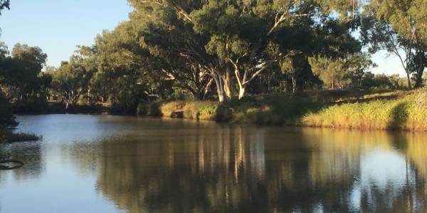 Tourism Darling Downs, Murweh Shire Council, TDD